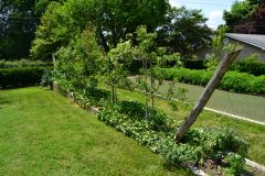 Espalier Fruit Fence at Volt